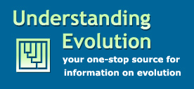 Understanding_Evolution1